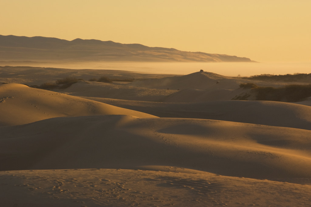 Protect Oceano Dunes: Surfrider and Oceano Beach Community Association combine comments to California's Ocean Protection Council (06/19/2020)
