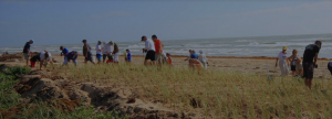 ISD Beach Cleanup June 17th