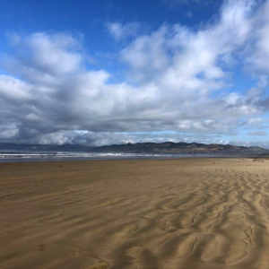 Oceano Dunes State Park ordered to stay closed after Endangered Species Act violation